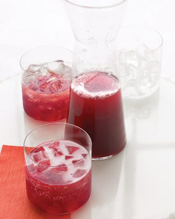 Med102552_1206_pomegranate_punch_xl