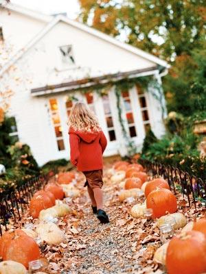 HalloweenPumpkins-pumpkinpath-s2